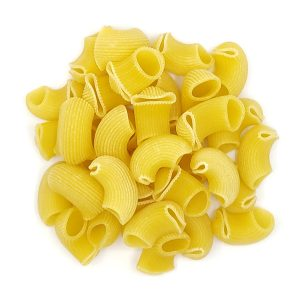 Organic Conchiglie (Seashell)