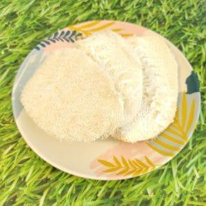 Biodegradable Luffa Sponge