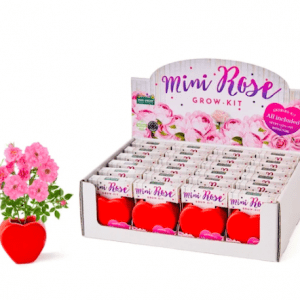 Paris Garden – Grow Your Own Kits: Mini Rose Heart