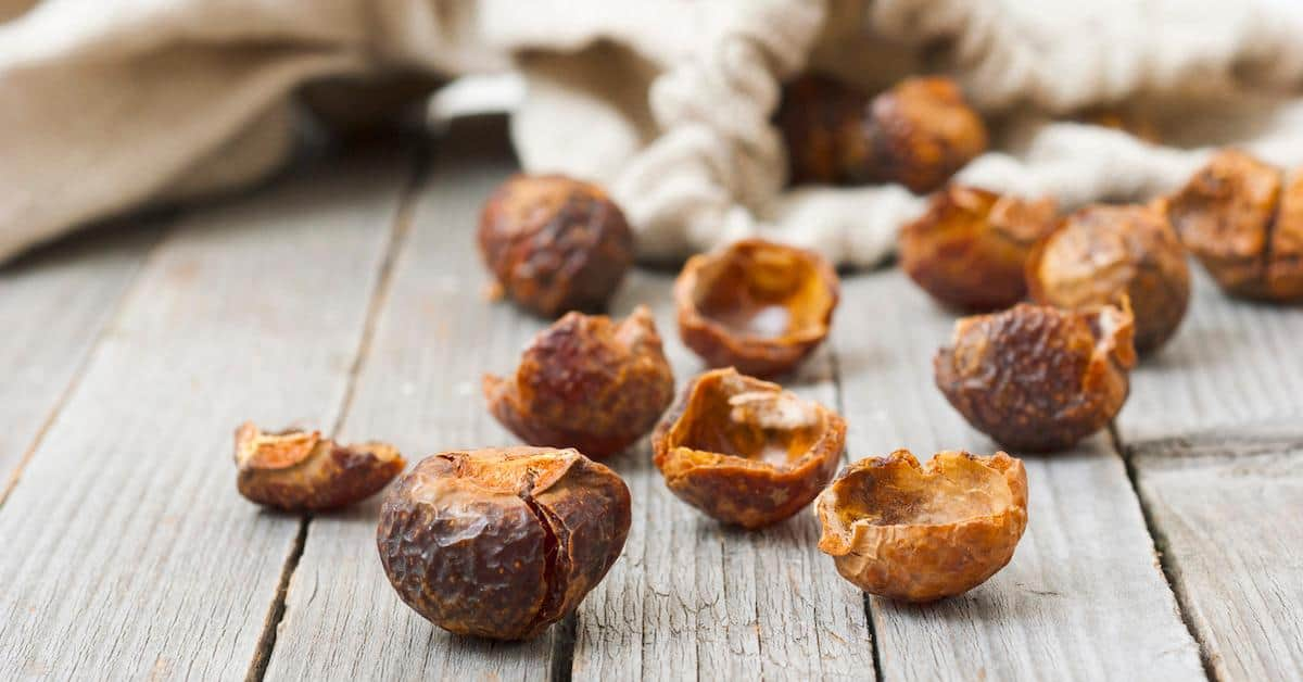 Soap Nuts: What Are They and How Can You Use Them?